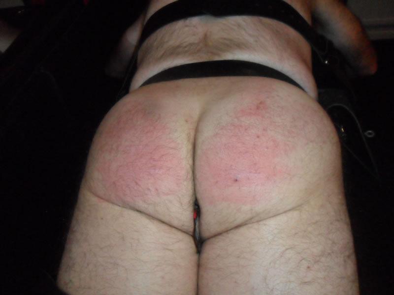 cheshire-mistress_5793