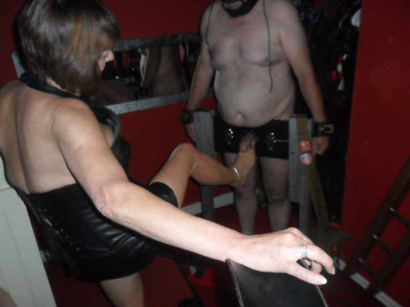 cheshiremistress20140905004v25