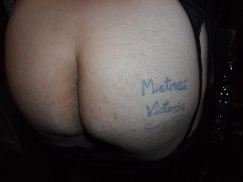 cheshire-mistress-20151012001v45